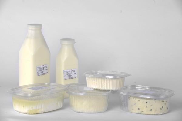 Jogurti i sirevi